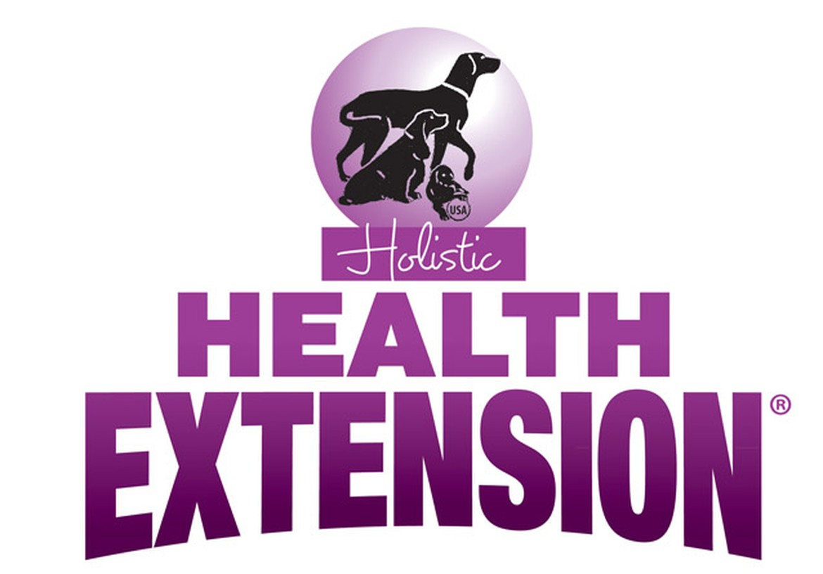Healthy Extensions